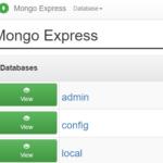 MongoDBへCSVインポートするときフィールドの型を指定するには