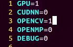 Jetson NanoでGPUとOpenCVが有効なYOLOをビルドするには