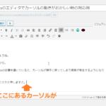 WordPressのエディタでカーソルの動きがおかしい時の対応例
