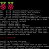 Raspberry Pi 4でCentOS 7ルートパーティションを拡張するには